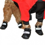 Caniswear Dog Boots